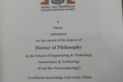 Ph.D. thesis-Aman
