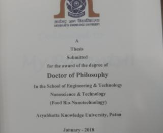Ph.D. thesis-Aman